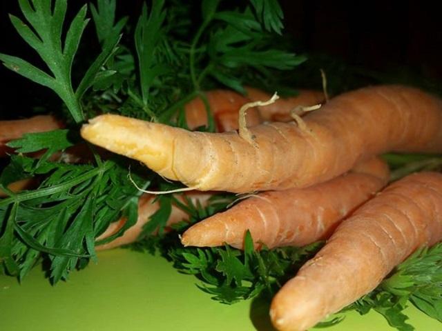 Razlozi zbog kojih bi trebali svakodnevno jesti mrkvu