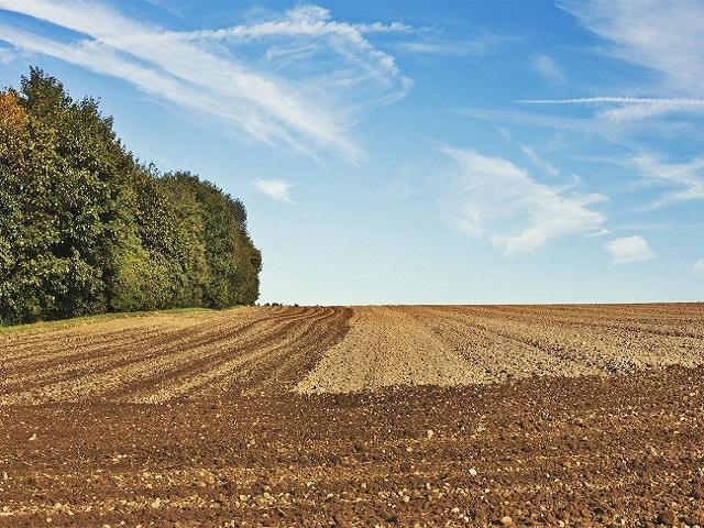 Poljoprivredno zemljište značajan razvojni potencijal BiH