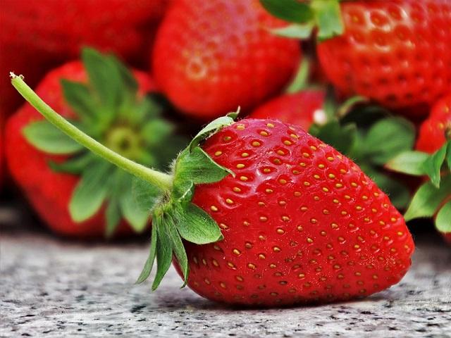Britanska kompanija zainteresovana za uzgoj jagode u Kalesiji
