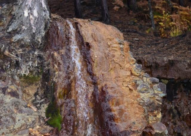 Pašagić: Iako su ogroman potencijal, Guber vode i dalje otiču uzalud