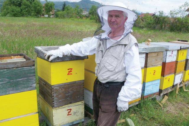 Džemil Halilović iz Visokog: Pčela je k'o zaljubljena mlada!
