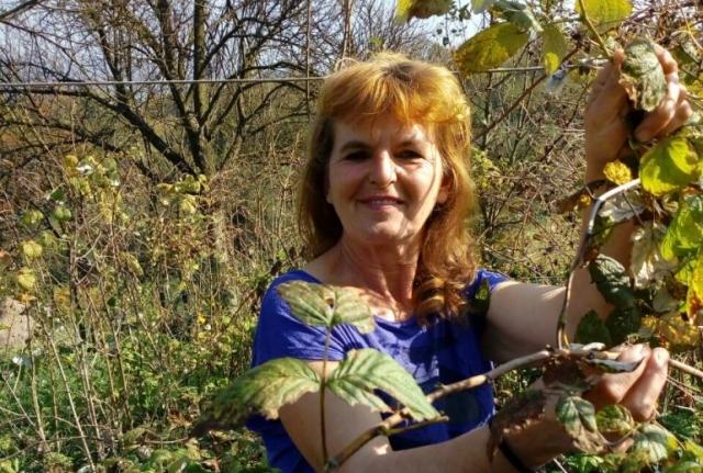 Od poljoprivrede se može zaraditi – priča porodice Mujkanović