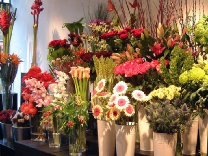 cvijece-cvjecara-1.jpg