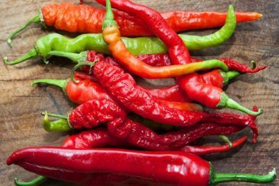 ljuta-paprika-foto-1.jpg