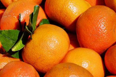 mandarine-foto-2.jpeg