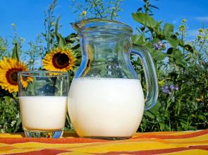Neodgovarajući kvalitet: Srbija zabranila uvoz mlijeka i mlječnih proizvoda iz BiH