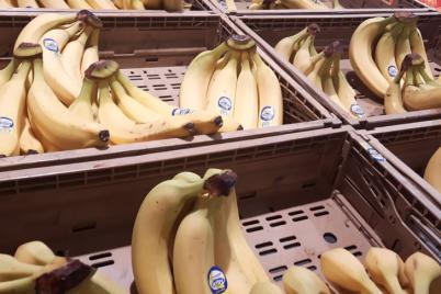 slovenija-banane-foto-1.png